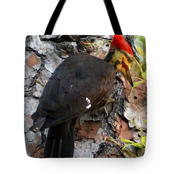 The Southeastern Pileated Woodpecker Tote Bag by Kim Pate