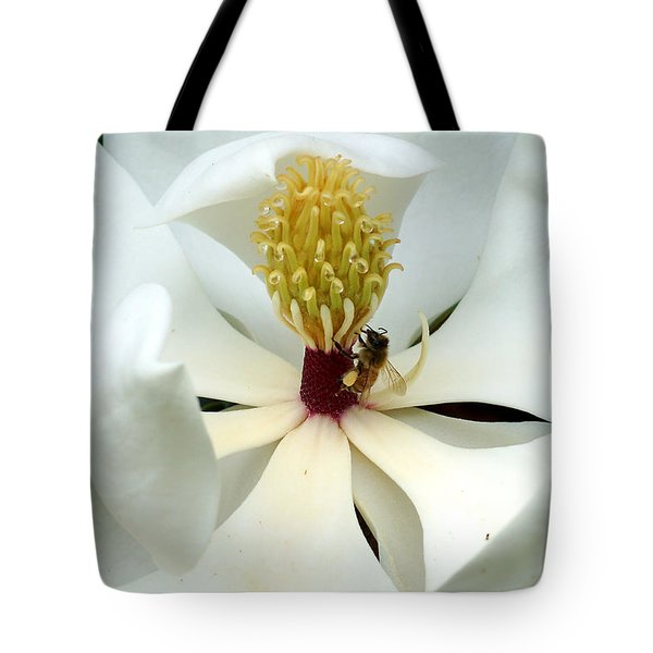 The Southern Magnolia Tote Bag by Kim Pate
