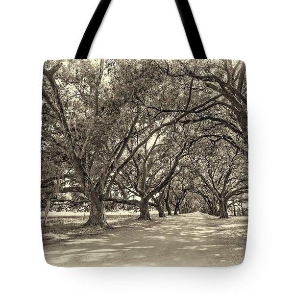 The Southern Way Sepia Tote Bag by Steve Harrington