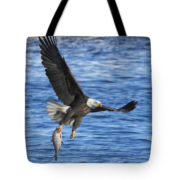 Tote Bag featuring the photograph The Spoils by Coby Cooper