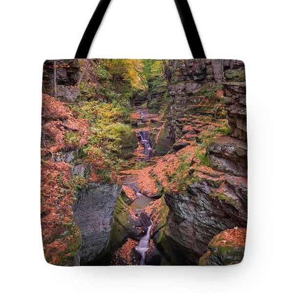 The Spring In The Fall Tote Bag