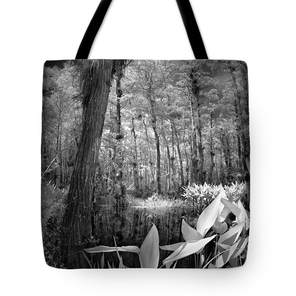The Strand Tote Bag by Bradley R Youngberg