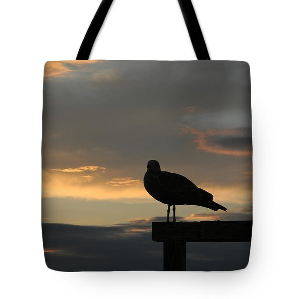 The Sunset Perch Tote Bag by Jean Goodwin Brooks