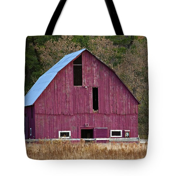 The Test Of Time... Tote Bag by Nina Stavlund