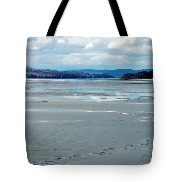 The Thaw Tote Bag by Mim White