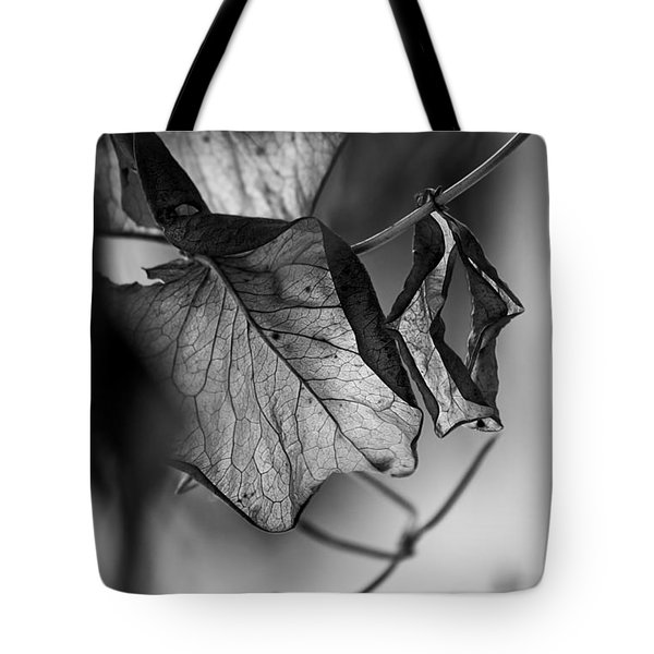 The Things Left Unsaid Tote Bag