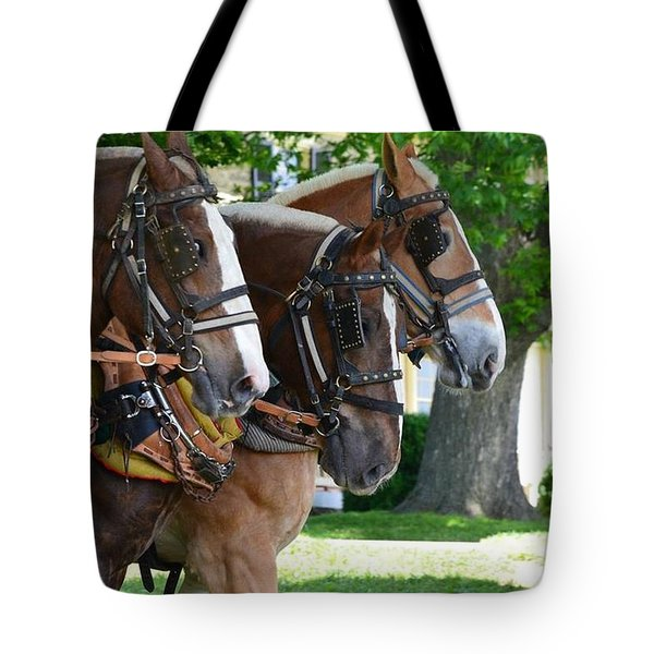 Tote Bag featuring the photograph The Three Amigos by Cathy Shiflett
