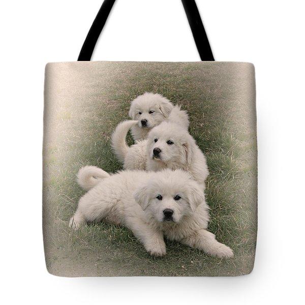 The Three Tote Bag by Bonnie Willis