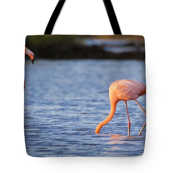 The Three Flamingos Tote Bag by Adam Romanowicz