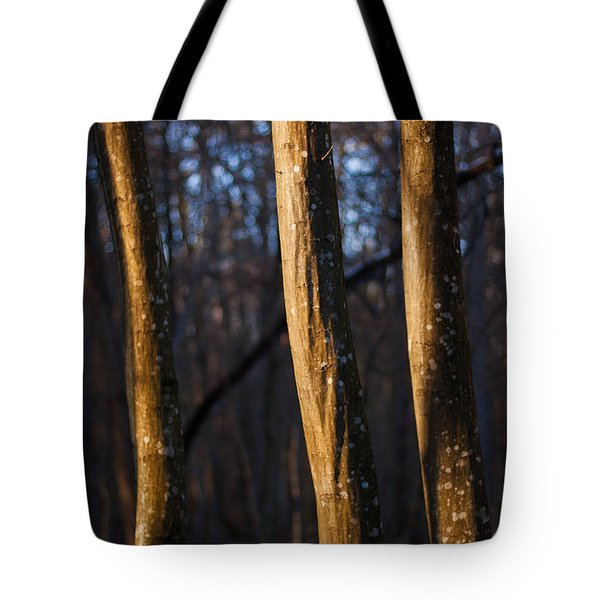 Tote Bag featuring the photograph The Three Graces by Davorin Mance