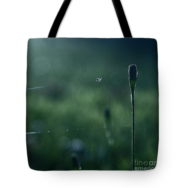 The Tightrope Walker  Tote Bag by Aimelle