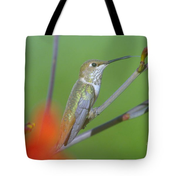 The Tongue Of A Humming Bird  Tote Bag by Jeff Swan