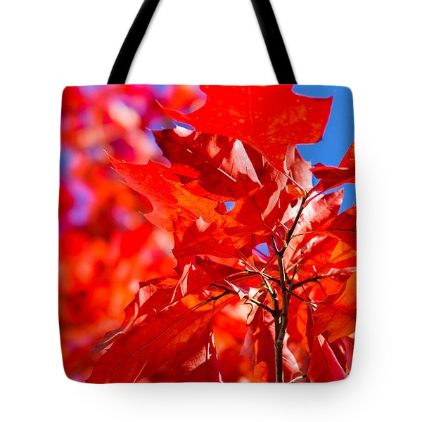 The Torch Tote Bag by Alexander Senin