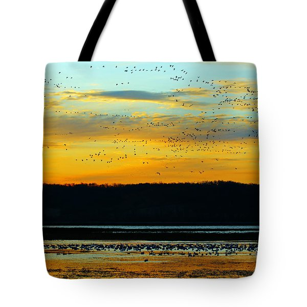 The Travelers  Tote Bag by Elizabeth Winter