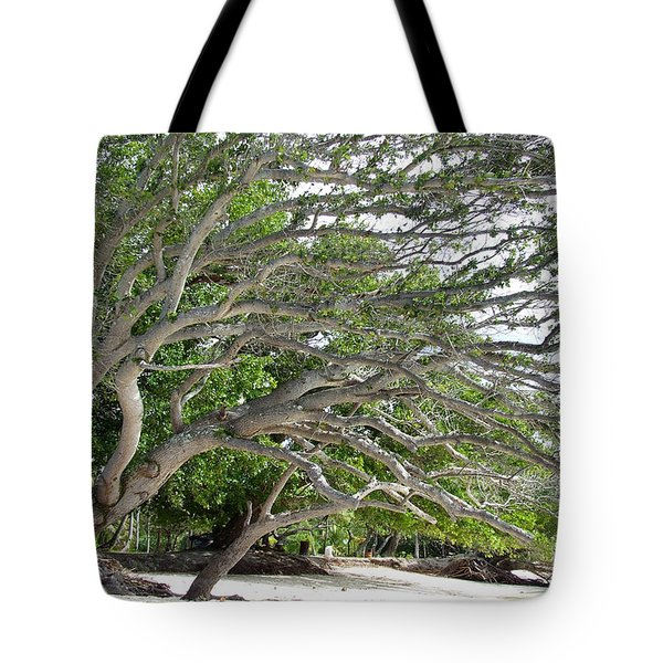 The Tree Tote Bag by Andrea Anderegg