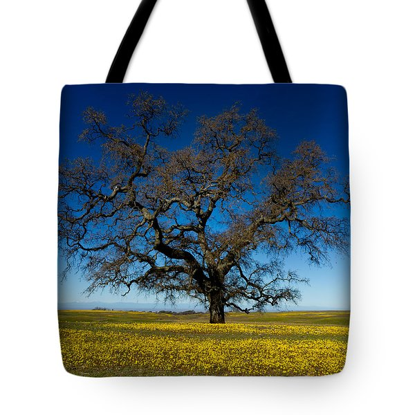 The Tree On Table Mountain Tote Bag