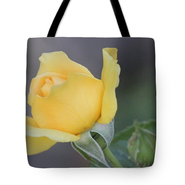 The Unfolding Tote Bag