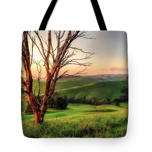 The Valley Tote Bag by Ray Warren