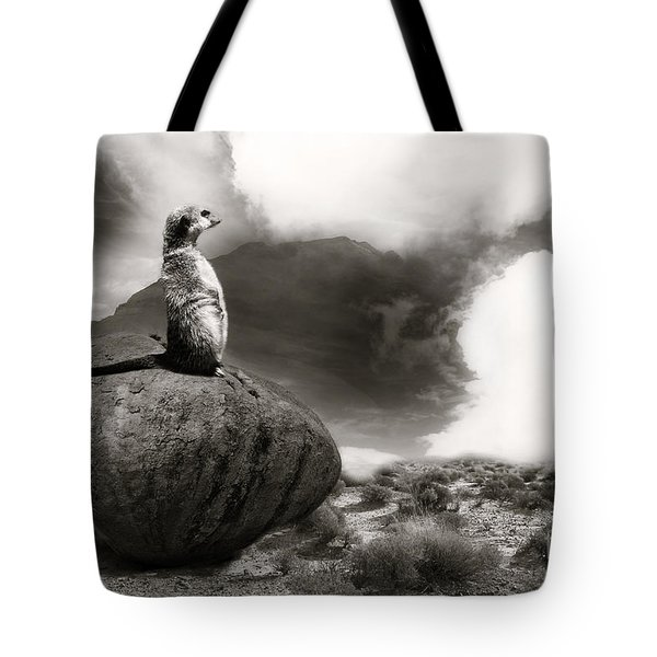 Tote Bag featuring the photograph The View by Christine Sponchia