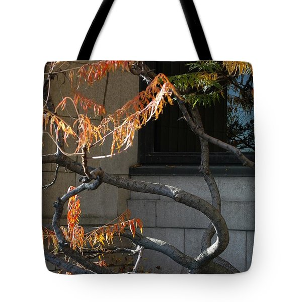 The View Tote Bag by Joseph Yarbrough
