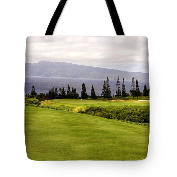 The View Tote Bag by Scott Pellegrin