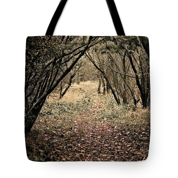 Tote Bag featuring the photograph The Walk by Meirion Matthias