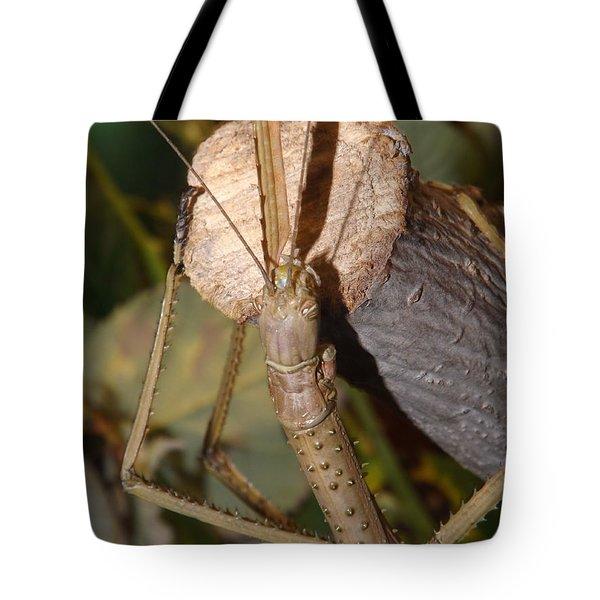 The Walking Stick Tote Bag by Sara  Raber