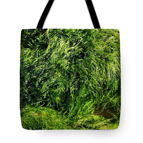 The Walls Are Alive - Seaside Abstract Tote Bag by Aidan Moran