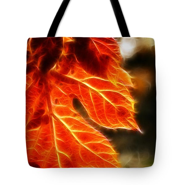 The Warmth Of Fall Tote Bag