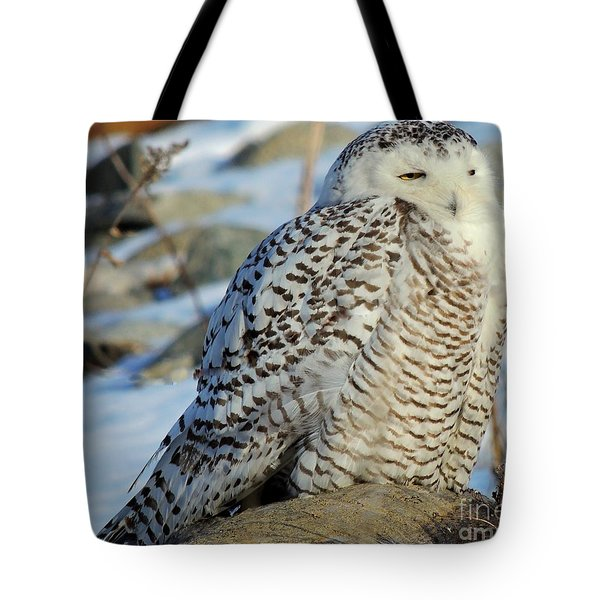 The Watcher Tote Bag by Marcia Lee Jones