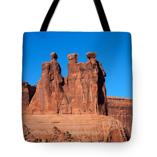 Tote Bag featuring the photograph The Watchers by John M Bailey