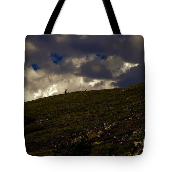 The Watchers Tote Bag by Jon Burch Photography