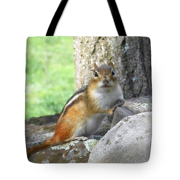 The Watching Chipmunk Reclines Tote Bag