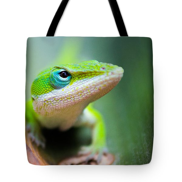 The Watching Eye Tote Bag by Shelby  Young