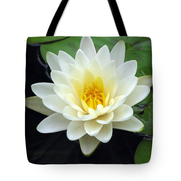 Tote Bag featuring the photograph The Water Lilies Collection - 02 by Pamela Critchlow