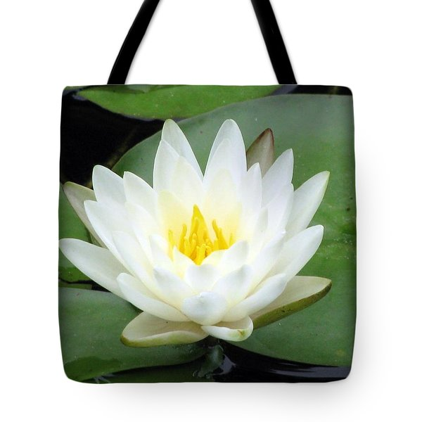 Tote Bag featuring the photograph The Water Lilies Collection - 04 by Pamela Critchlow