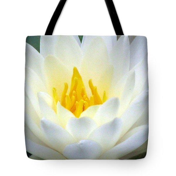 Tote Bag featuring the photograph The Water Lilies Collection - 05 by Pamela Critchlow