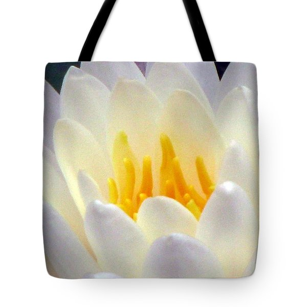Tote Bag featuring the photograph The Water Lilies Collection - 11 by Pamela Critchlow