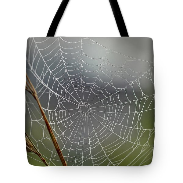 Tote Bag featuring the photograph The Web by Kerri Farley