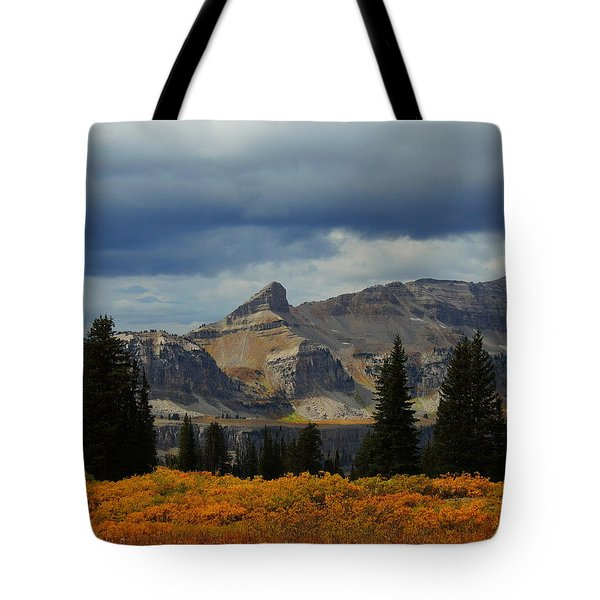 Tote Bag featuring the photograph The Wedge by Raymond Salani III