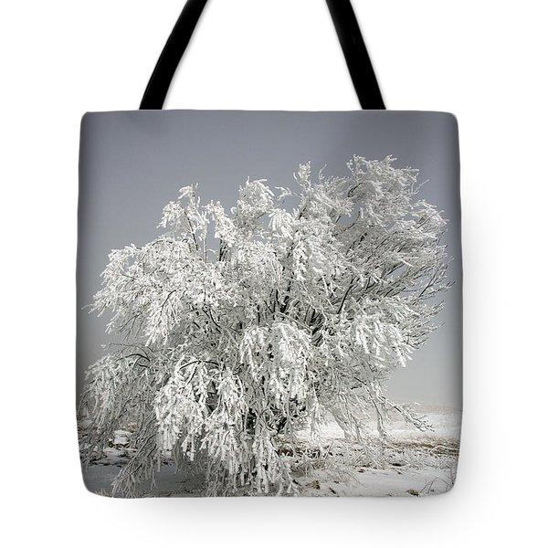 The Weight Of Winter Tote Bag by John Haldane