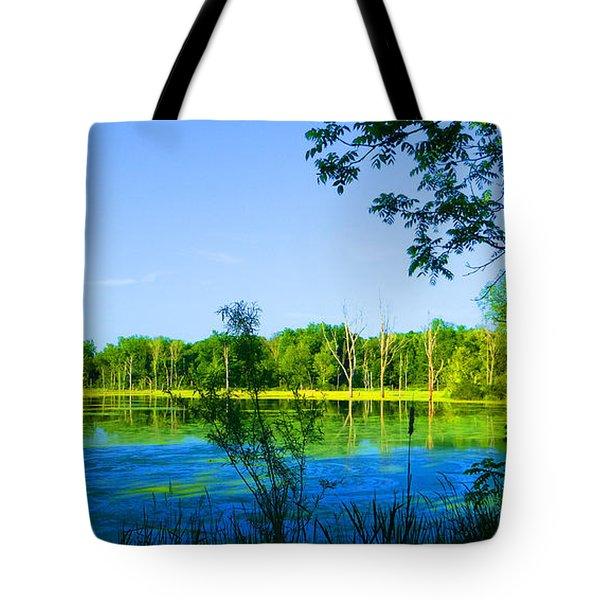 The Wetlands At Potato Creek Tote Bag