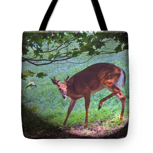 The Whitetail Buck Visits Tote Bag