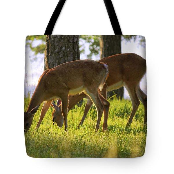 The Whitetail Deer Of Mt. Nebo - Arkansas Tote Bag