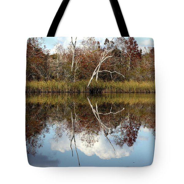 Tote Bag featuring the photograph The Winter Tree by Debra Forand