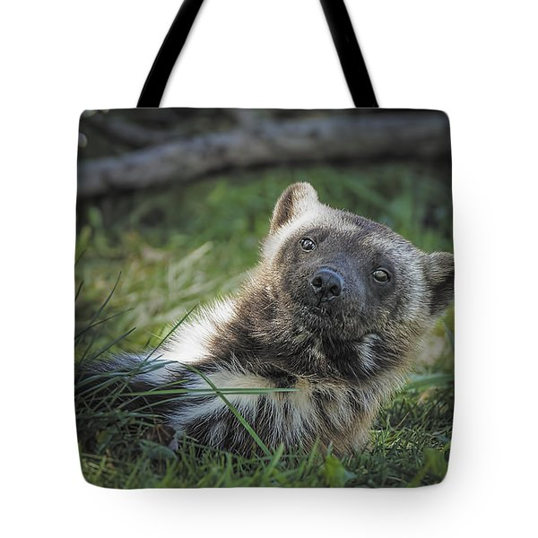 The Wolverine Skunk Bear Happy Face Tote Bag by LeeAnn McLaneGoetz McLaneGoetzStudioLLCcom