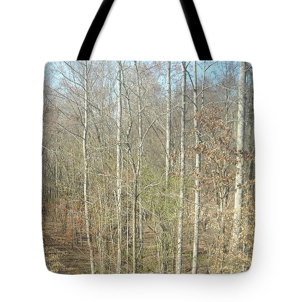 The Woods Tote Bag by Joseph Baril
