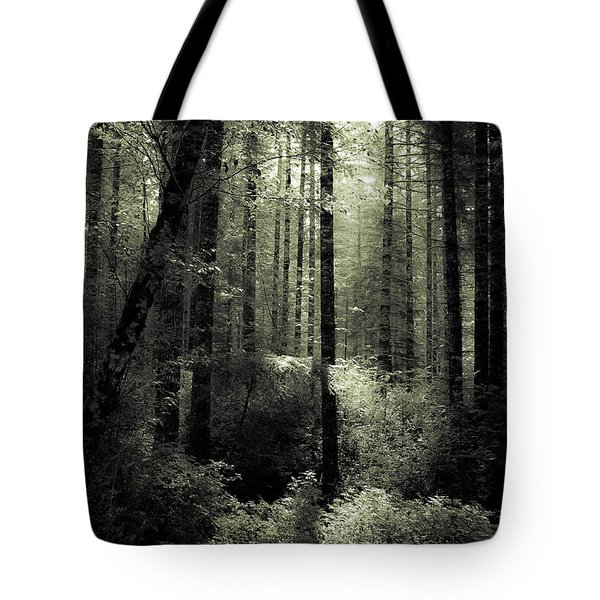 The Woods Tote Bag by Katie Wing Vigil