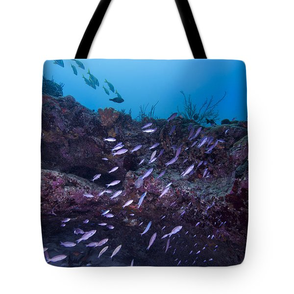 The World Of Purple Tote Bag