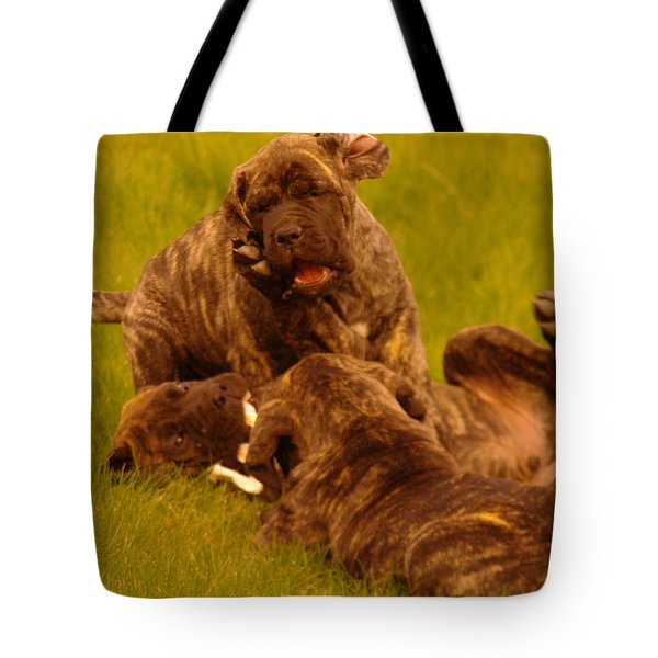 The Wrestling Match Tote Bag by Jeff Swan